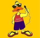 Macheta Radio Sonvest Oradea patrata