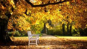 sunny_autumn_day